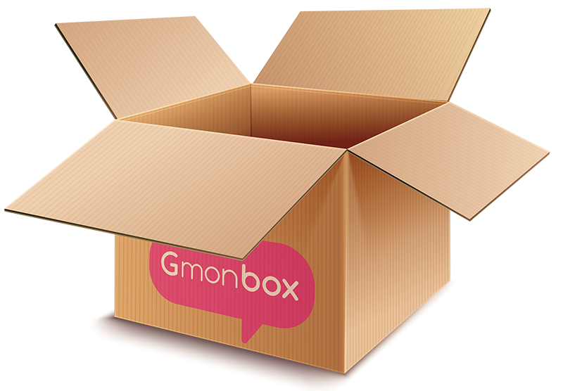 montage carton GMONBOX 1